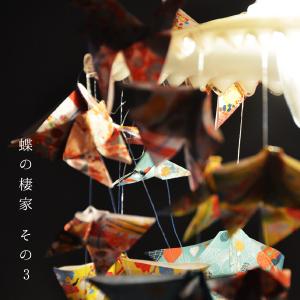 蝶の棲家3